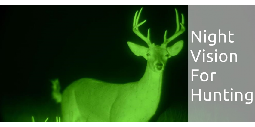 Hunting with Night Vision. Is it Legal?