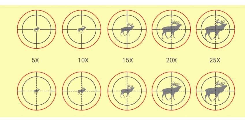 Best Scope Magnification: How Much is Too Much?